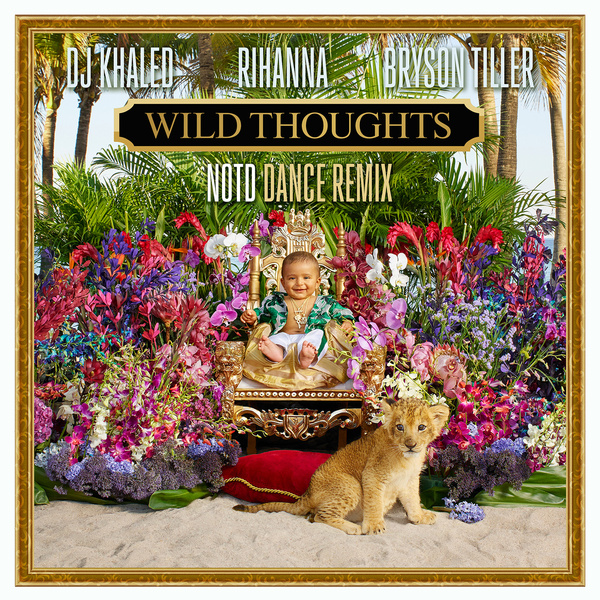 Wild Thoughts (NOTD Dance Remix)