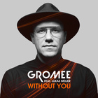 Without You (Feat. Lukas Meijer)