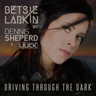 Driving Through The Dark (Extended Mix) (With Dennis Sheperd & Liuck)