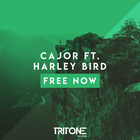 Free Now (Feat. Harley Bird)