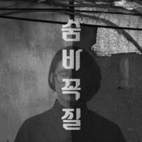 인천의 포크 싱글 시리즈 VOL. 2 - 숨바꼭질
