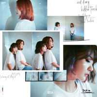 Red Diary 'Hidden Track'