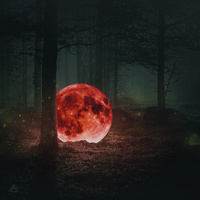 Red Moon : The Piano Forest