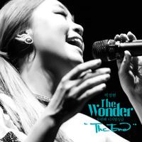 The Wonder 2nd DS