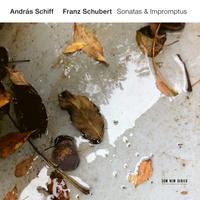 Franz Schubert : Sonatas & Impromptus