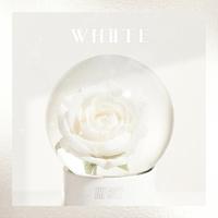 THE BOYZ Special Single '화이트 (White)'