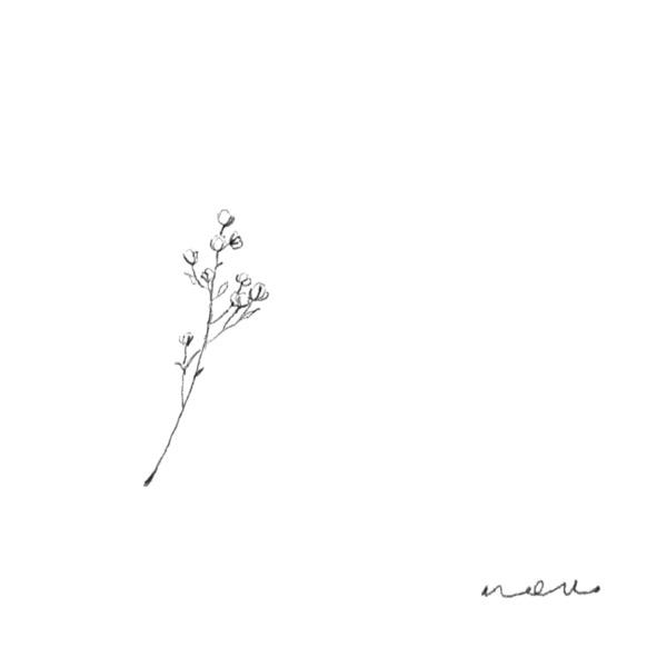 겨울꽃 (冬花)