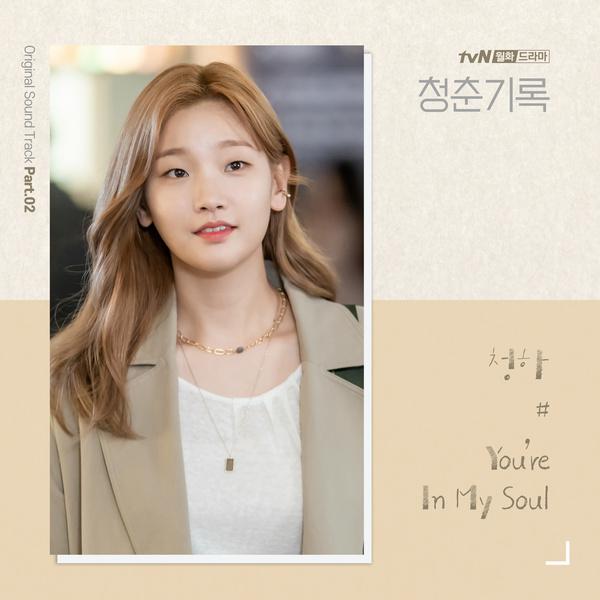 청춘기록 OST - Part.2 (tvN 월화드라마)