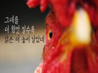 그네 위의 닭