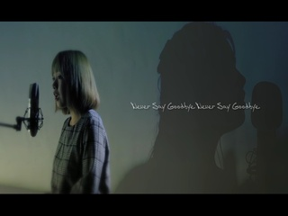 Never Say Goodbye (One - Take Live) (Feat. 리쥐)