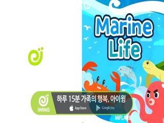 (아이윙) Marine Life