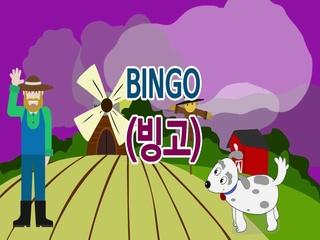Bingo (빙고)