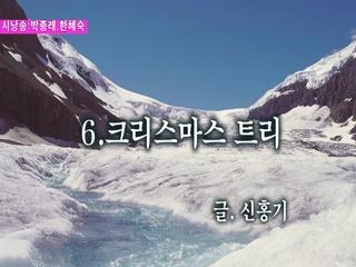 크리스마스 트리 (시낭송 박종래 & 한혜숙)