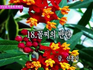 꼴찌의 반란 (시낭송 박종래 & 한혜숙)