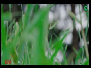 달빛섬아이 (an apple of your eyes) (Feat. 브레이)