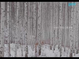 김슬기 - [나보다 그녀는] '나보다 그녀는' Lyric Video