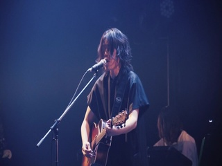 Phototaxis (Live Ver.)