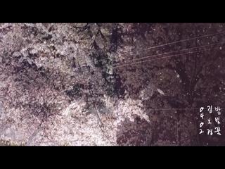 밤벚꽃 (Teaser)