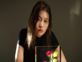 월명야 (月明夜) (Feat. 신세하)