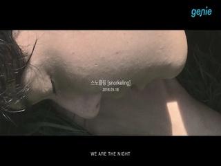 위아더나잇 (We Are The Night) - [스노클링] TEASER