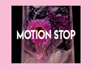 Motion Stop (Teaser 3)