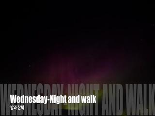 밤과 산책