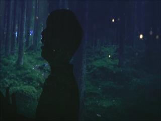 숲의 목소리 (Voice Of The Forest) (Feat. 이라온) (Teaser)