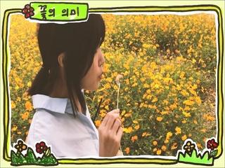 꽃의 의미