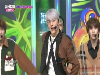 [쇼챔피언 287회] '펜타곤 - 청개구리' (방송 Clip)