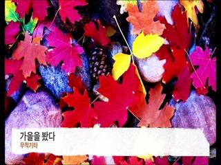 가을을 봤다