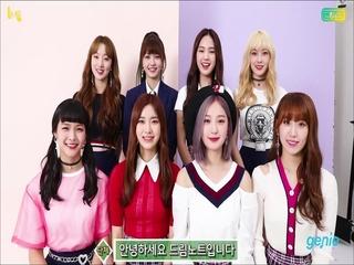 드림노트 - [Dreamlike] 발매 인사 영상