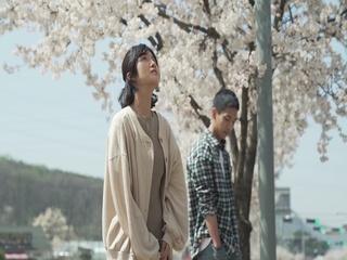 다시 벚꽃 (Feat. 문민철)