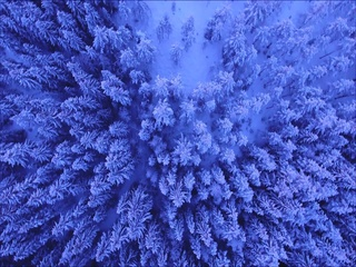 Blue (Teaser)