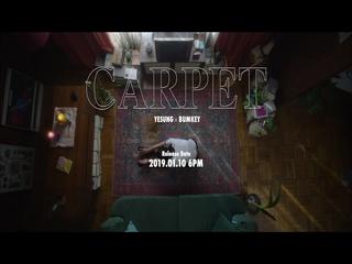 Carpet (Teaser)