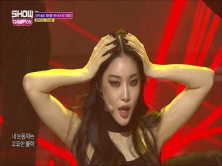 [쇼챔피언 300회] '청하 - Black (원곡:이효리)' (SPECIAL STAGE)