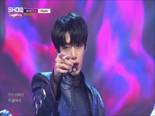 [쇼챔피언 305회] '몬스타엑스 - Alligator' (방송 Clip)