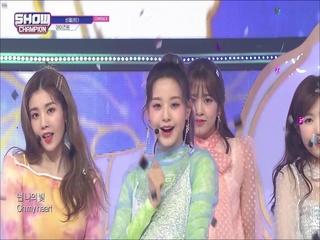 [쇼챔피언 311회] 'IZ*ONE (아이즈원) - 비올레타' (방송 Clip)