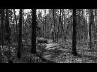Headstone (Feat. Rachael Yamagata)