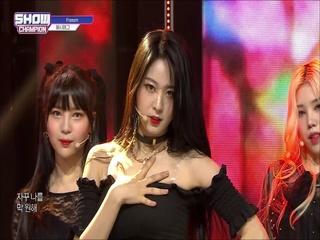[쇼챔피언 315회] '해시태그 - Freesm' (방송 Clip)
