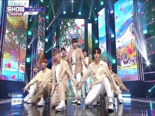 [쇼챔피언 315회] '원더나인 (1THE9) - 우리들의 이야기' (방송 Clip)