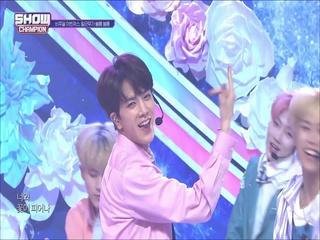 [쇼챔피언 316회] '더보이즈(THE BOYZ) - Bloom Bloom' (방송 Clip)