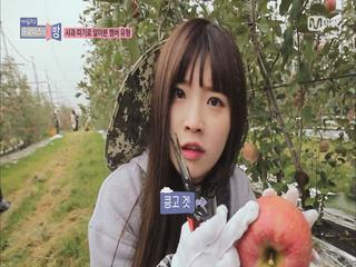 [3회]나는야 (킁고?)사과를 찾아헤메는 하빵에나