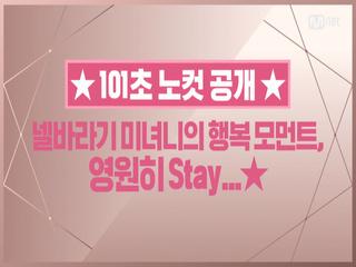 [101초 노컷] 넬바라기 미녀니의 행복 모먼트, 영원히 Stay..★_황민현
