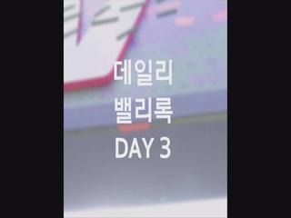 [2017 밸리록] DAY3|데일리 밸리록