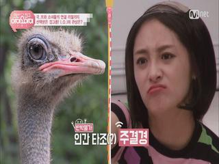 [랜선친구/3회] 반박불가 타조상 <주결경>