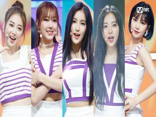 청순+발랄 서머송! ′엘리스′의 ′Summer Dream′ 무대