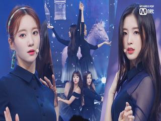 '최초공개' 콘셉트 천재 '오마이걸'의 '다섯 번째 계절' 무대