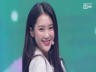 '최초공개' 7명의 요정들 '오마이걸'의 '소나기' 무대