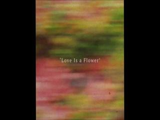 Love is a Flower (Teaser)