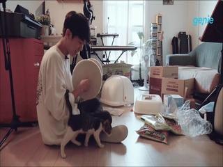 오곤 - [고양이 집] 집사 '오곤' & 집주인 '곤돌이' 영상 일기 03